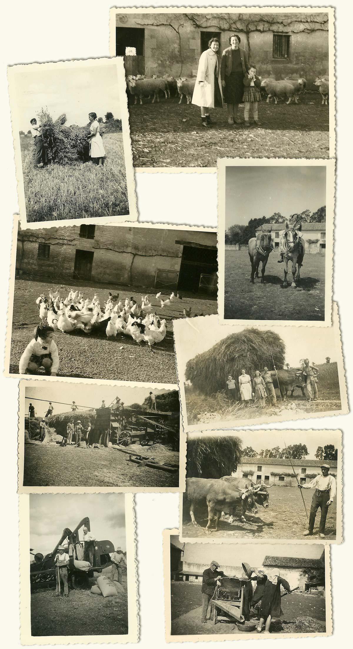 Photos anciennes de la Fayaudrie